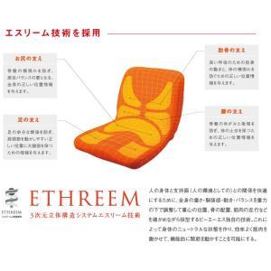 (代引き不可)車椅子用クッション モールドシート PAS-MSW-002 ピーエーエス (車椅子クッション 座位保持 腰痛対策 姿勢 体幹 ポジショニング) 介護用品 ekaigoshop2 03