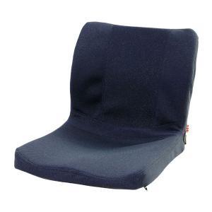 (代引き不可)車椅子用クッション モールドシート PAS-MSW-002 ピーエーエス (車椅子クッション 座位保持 腰痛対策 姿勢 体幹 ポジショニング) 介護用品|ekaigoshop