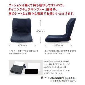 (代引き不可)車椅子用クッション モールドシート PAS-MSW-002 ピーエーエス (車椅子クッション 座位保持 腰痛対策 姿勢 体幹 ポジショニング) 介護用品|ekaigoshop|05