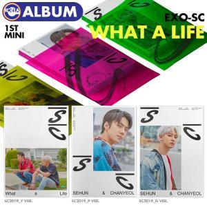 【ポスター(丸めて)付、即日発送】【 バージョンランダム / EXO-SC  ミニ1集アルバム Wh...