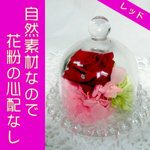 プリザ(ガラスドームレッド)ガラスの小部屋の小さなお花畑(プリザーブドフラワー)生花より長持ちでお得|ekoukai