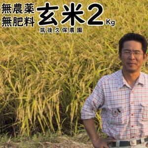 無肥料栽培米 2Kg// 玄米 | 無農薬 福岡県産 ひのひかり 筑後久保農園|ekubo
