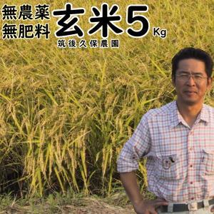 無肥料栽培米 5Kg//玄米 | 無農薬 福岡県産 ひのひかり 筑後久保農園|ekubo