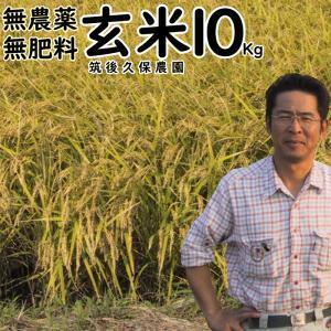 無肥料栽培米 10Kg | 無農薬 玄米 福岡県産 ひのひかり 筑後久保農園|ekubo