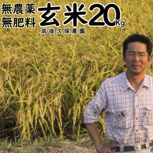 無肥料栽培米 20Kg | 無農薬 玄米 福岡県産 ひのひかり 筑後久保農園|ekubo