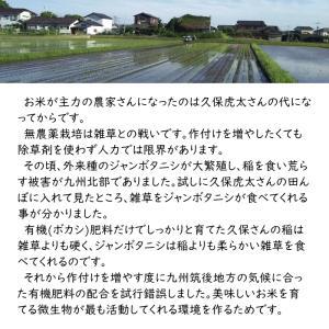 無肥料栽培 発芽前玄米2Kg | 無農薬 福岡県産 ゆめつくし 0.5分づき米|ekubo|11