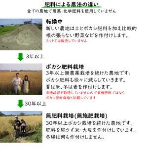 無肥料栽培 発芽前玄米2Kg | 無農薬 福岡県産 ゆめつくし 0.5分づき米|ekubo|12
