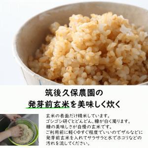 無肥料栽培 発芽前玄米2Kg | 無農薬 福岡県産 ゆめつくし 0.5分づき米|ekubo|06