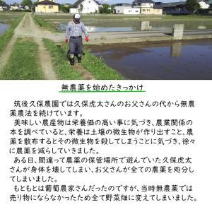 無肥料栽培 発芽前玄米2Kg | 無農薬 福岡県産 ゆめつくし 0.5分づき米|ekubo|10