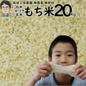 無肥料栽培 もち米 20Kg   無農薬 福岡県産 ひよくもち 筑後久保農園 ekubo