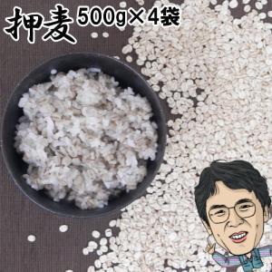 押麦 500g×4袋 | 無農薬 大麦 福岡県産 筑後久保農園|ekubo