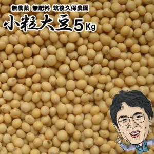 無肥料 小粒大豆5Kg|ekubo