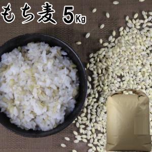 筑後久保農園のもち麦(くすもち二条 大麦) くすもち二条はβグルカン(水溶性食物繊維)が6.2%大変...