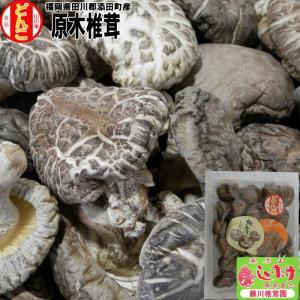 原木乾しいたけ どんこ 大 120g // 袋入 ご家庭用 福岡県産 藤川椎茸園