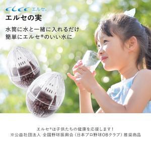 エルセの実 洗浄力 美容 日本産 国産 エルセ 浸透力 elce-store
