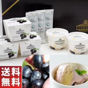 オリーブオイルをかけて食べるアイス 木次乳業 スーパープレミアムアイスクリーム VANAGA ブラックオリーブ&バニラセット