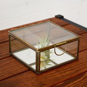 ガラスと真鍮でできた鏡付き収納ケース Sサイズ elements