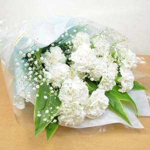 白カーネーション20本&かすみ草 花束 ギフト プレゼント 贈り物 花 ギフト|elfleur