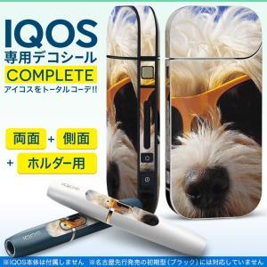 iQOS アイコス 専用スキンシール 裏表2枚 側面 ホルダー フルセット 両面 サイド ボタン 写真 動物 犬 006384|emart