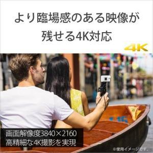 ソニー デジタル4Kビデオカメラレコーダー FDR-X3000 ボディ emedama 03