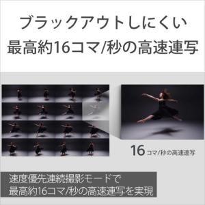 ソニー Cyber-shot DSC-RX0|emedama|04