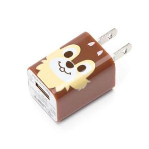PGA USB電源アダプタ1A チップ
