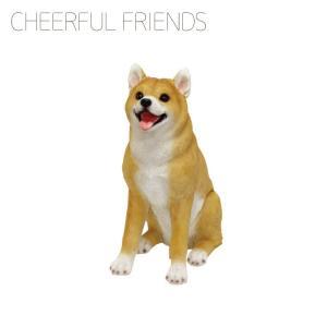 チアフルフレンズ 柴犬のソラ【丸和貿易】 emiook
