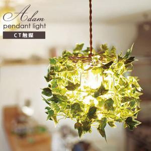アダム ペンダントライト Aタイプ CC-40353【照明 LED対応 吊り下げ 植物 アイビー】 emiook