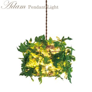 アダム ペンダントライト Bタイプ CC-40354【照明 LED対応 吊り下げ 植物 アイビー】 emiook