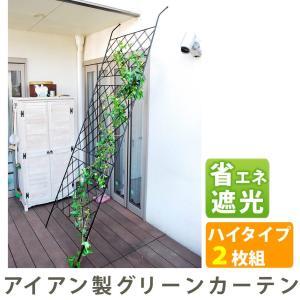 アイアン製グリーンカーテン  2枚組 DNF-270-2P|emiook