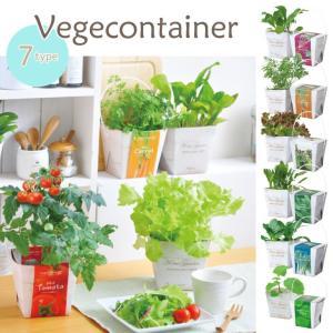 【Vegecontainer ベジコンテナー■全7種】  防水コンテナだから、お部屋でも水漏れの心配...