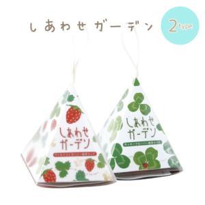 しあわせガーデン 全2種■ワイルドストロベリー/クローバー GD347【栽培キット】|emiook
