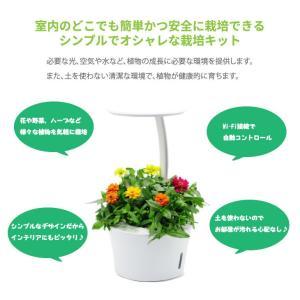 【送料無料】水耕栽培キット mistGrow ミストグロウMP-355FW LED搭載 Wi-Fi機能|emiook|02