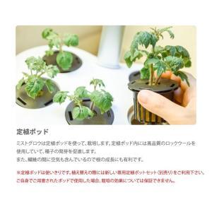 【送料無料】水耕栽培キット mistGrow ミストグロウMP-355FW LED搭載 Wi-Fi機能|emiook|12