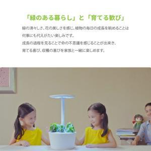 【送料無料】水耕栽培キット mistGrow ミストグロウMP-355FW LED搭載 Wi-Fi機能|emiook|03