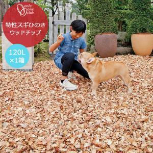 【送料無料】特選スギひのきウッドチップ 1箱(120L)■グラウンドカバー|emiook