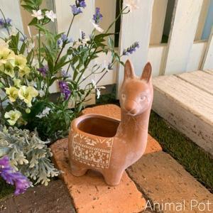 ビスケットアニマルポットC Sサイズ アルパカ CARNAC カルナック ガーデニング 栽培 置物 植木鉢|emiook