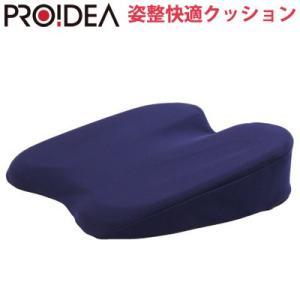 ドリーム 姿整快適クッション 姿勢ケア D-0070-0609-00 PROIDEA【100サイズ】|emon-shop