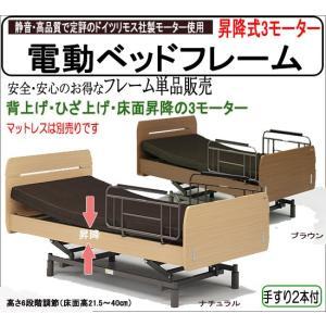 昇降式 電動ベッドフレーム 3モーター (レクシオ) マット別売り gn364ft-3up-frame|emono