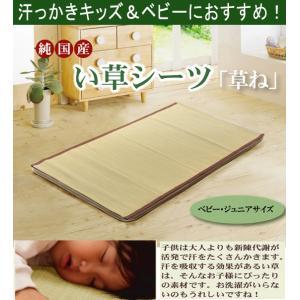 い草の寝ござシーツ(草ね汗取りp)ベビー・キッズ70x120cm kh755-1b|emono