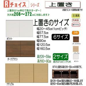 セミオーダー壁面収納家具 Rチョイス 上置き幅57.5cm rs014-11-57|emono