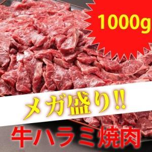 アメリカ産・カナダ産 メガ盛り牛ハラミ焼肉 1000g|emutuselect