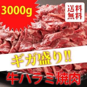 アメリカ産・カナダ産 ギガ盛り牛ハラミ焼肉 3000g|emutuselect