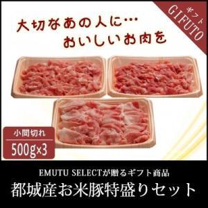 【エムツーの日】都城産お米豚得盛セット|emutuselect