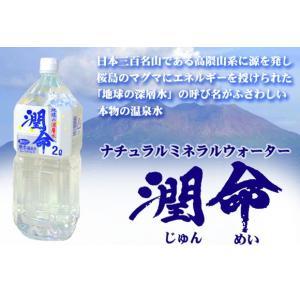 【M's】鹿児島 垂水温泉水 ナチュラルミネラルウォーター 潤命 2L×12本(1ケース/超軟水4.0) emuzu-international