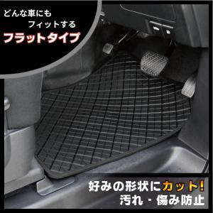 EF180S イナス ファセット フロント用 車両に合わせて形状をカットできる ブラック フラット形状 汚れを防止 防水機能 お車にフィット|enas-store