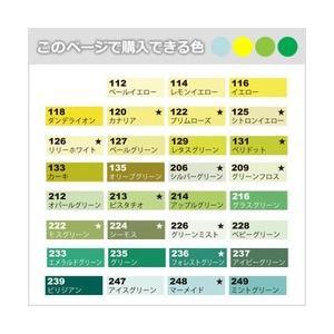 ポイント10倍 メール便可 ネオピコカラー 単色 イエロー、イエローグリーン、グリーン系|enauc|02