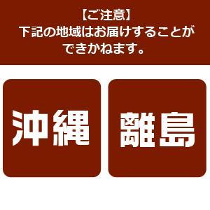 ドウシシャ ハンガーラック キャスター付 アイボリー HRC-7750|encho|04