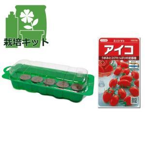 春まき種の苗つくりセット:トマト:ミニトマト アイコ