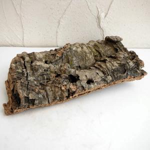 観葉植物や蘭など、植物のディスプレイ・お部屋のアクセントとして使える天然素材100%のコルク材です。...